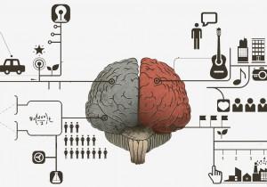 Cerebro visual inforgrafico