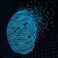 Personal data: los algoritmos que rigen nuestras vidas digitales