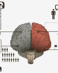 Visualiza: Comprender a través de la información visual